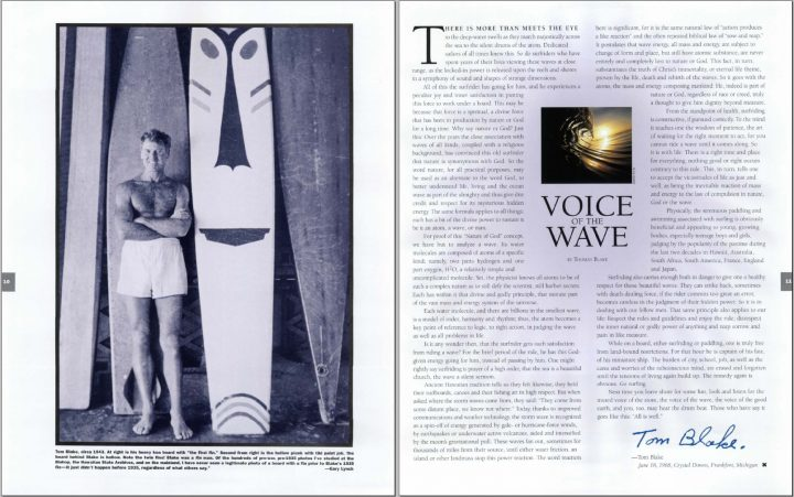 Voice of the Wave