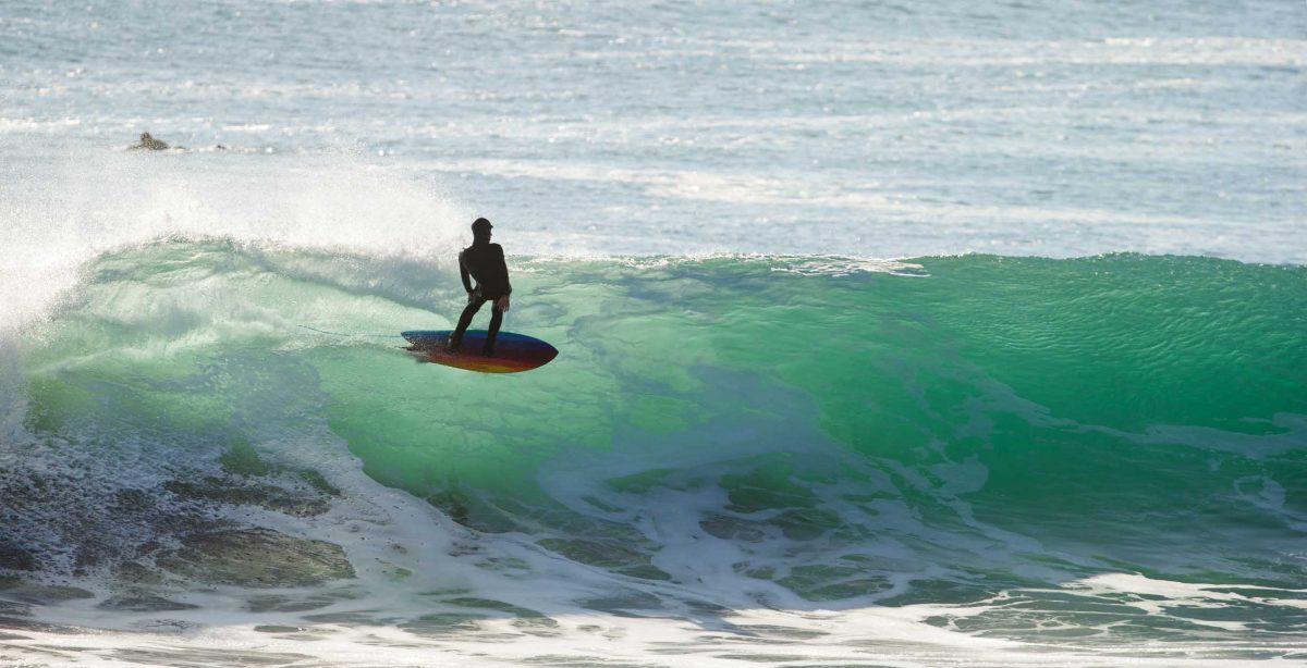 Surfboard Surf Surfer Beach Seaside Dress It Up Craft Buttons SURFIN/' SAFARI